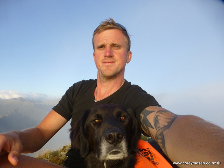 Ajax - the kea conservation dog