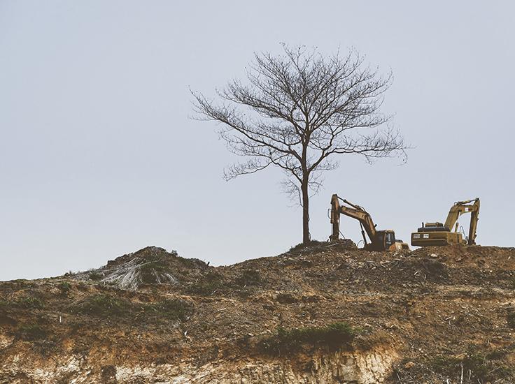 The destruction of the landscape