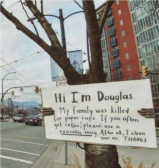 Tree holding a sign