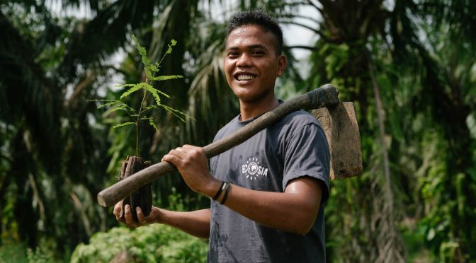 Ecosia Planting Trees in Indonesia