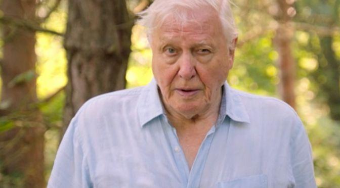 Sir David Attenborough. Extinction: The Facts