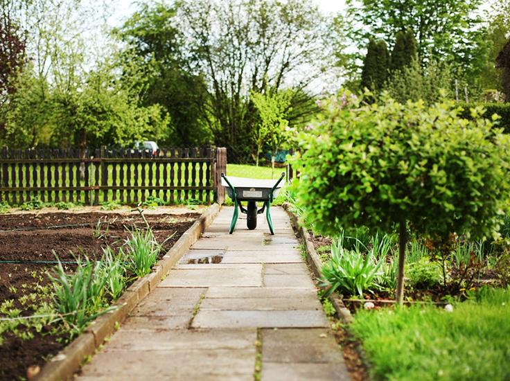 A wheelbarrow sit on a path in a garden