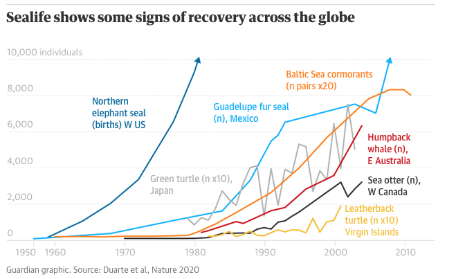 Guardian graphic. Source Duarte et al Nature 2020