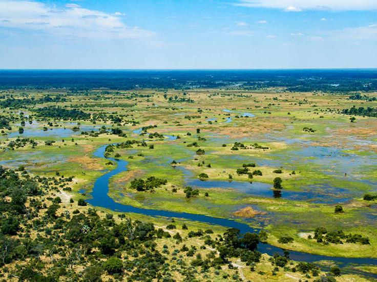 The elephants lived on the fringes of the Okavango Delta, a unique 'desert wetland'. evenfh / shutterstock