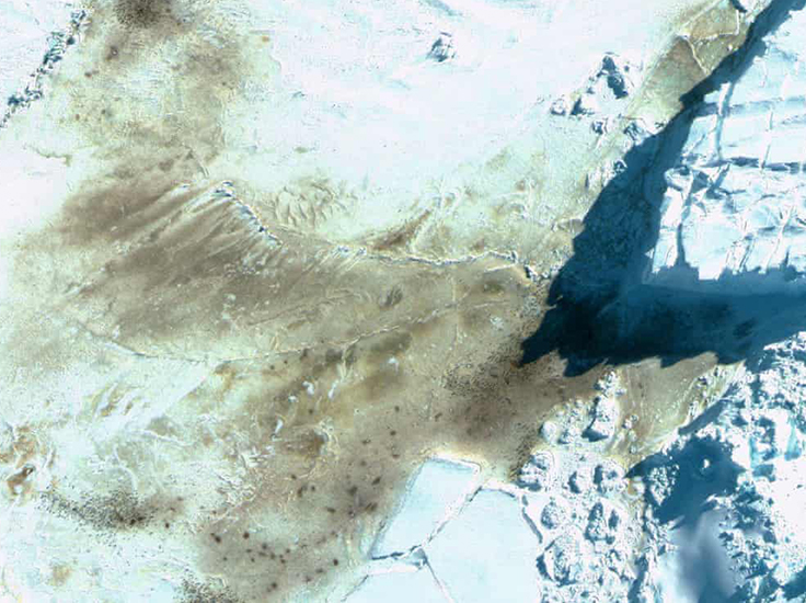 The discovery were made by spotting the distinctive red-brown guano patches the penguin leave on ice through satellite images. Photograph: British Antarctic Survey