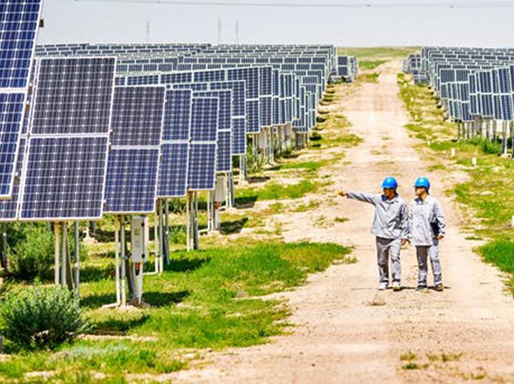 two men walking in a field of solar panels