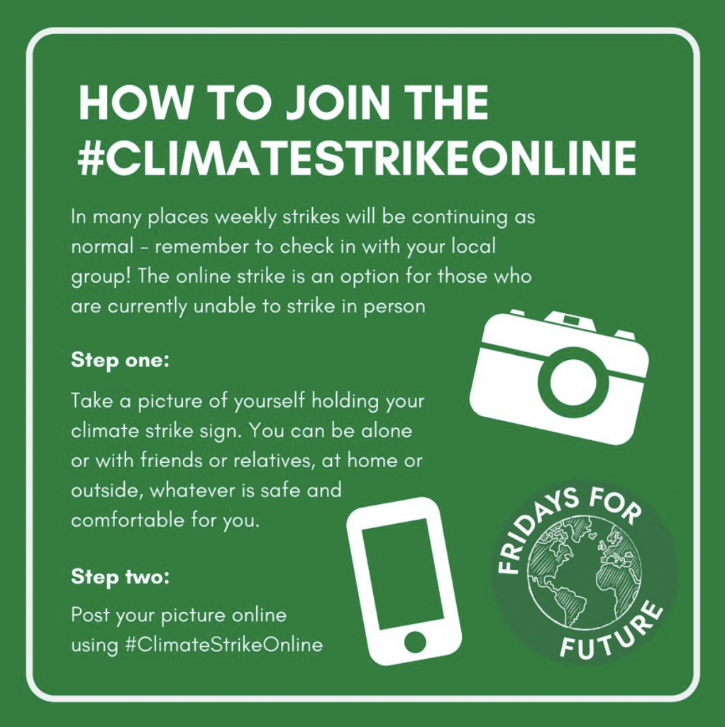 One - take a picture of yourself with your climate strike sign Two - post your picture using #ClimateStrikeOnline