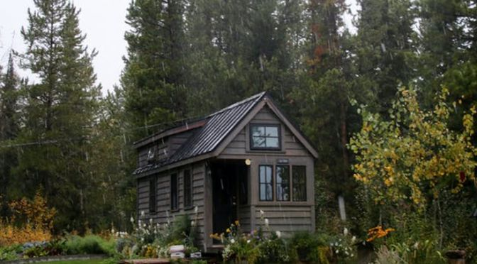 Tiny house in garden landscape