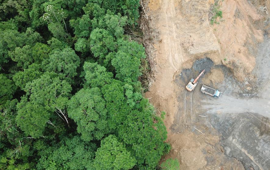 Leading EU, UK Supermarkets to Blockade Brazil Over Deforestation Legislation