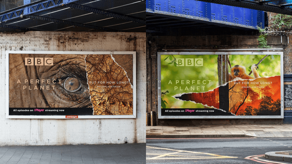 BBC Billboards Set on Fire to Save the Planet