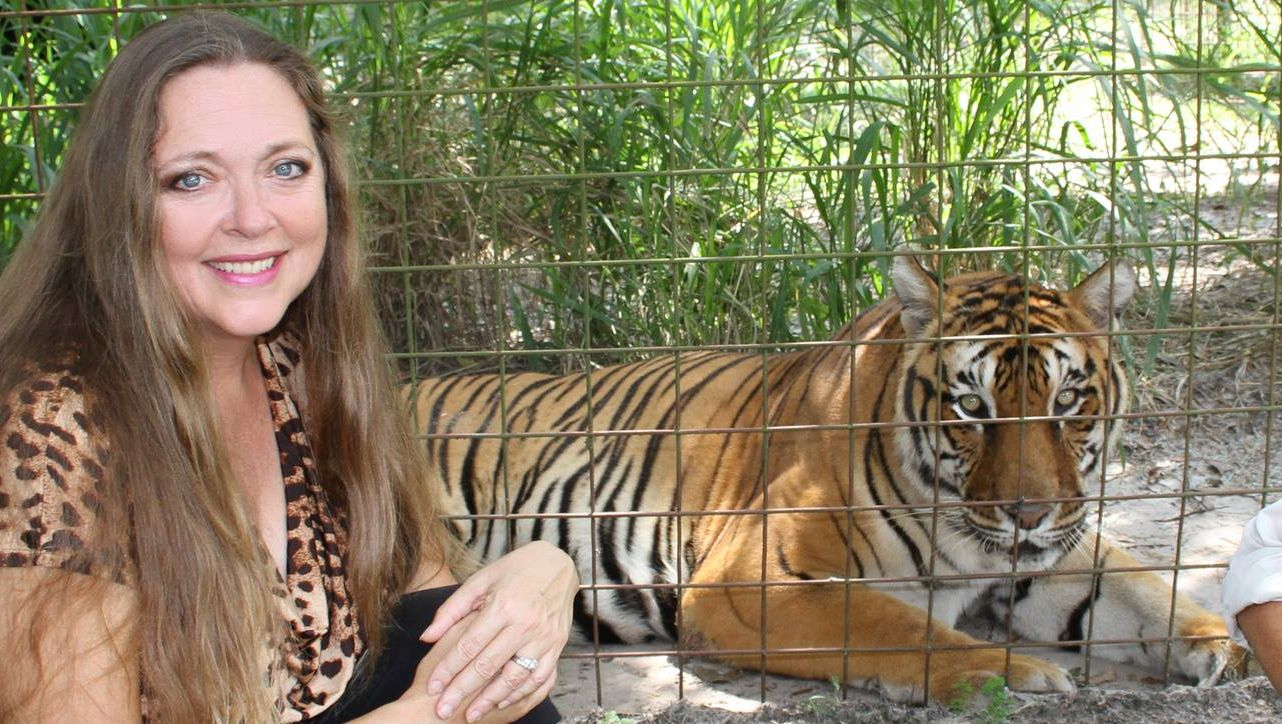 64 Million 'Tiger King' Fans Can Soon Watch Carole Baskin In a New Documentary