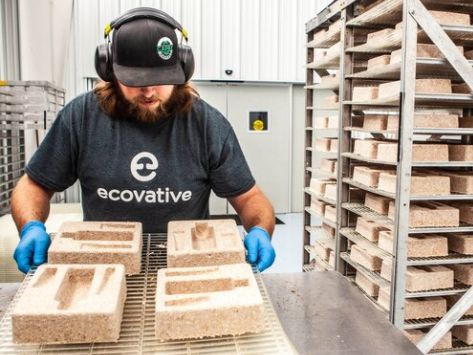 Ecovative Design Raises $60 Million to Make Vegan Leather and Bacon From Mushrooms