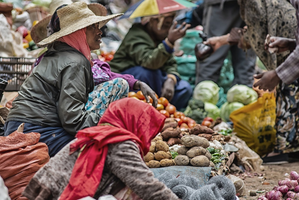 Slowing Climate Change Is Necessary to Protect 33% of Global Food Supply