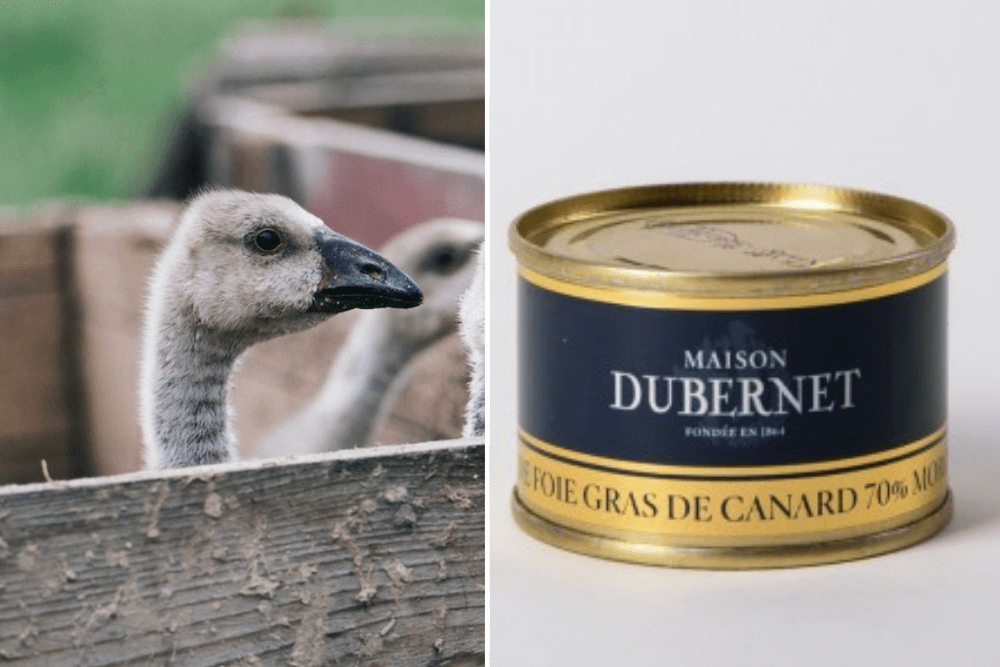 Post-Brexit, Britain Is Now Poised to Ban Foie Gras