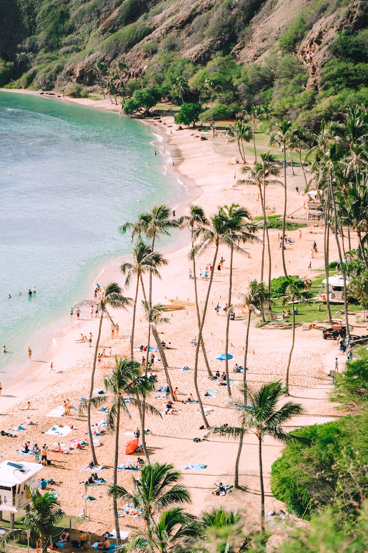Hawaii Is the First U.S. State to Declare a Climate Emergency: Here's Why
