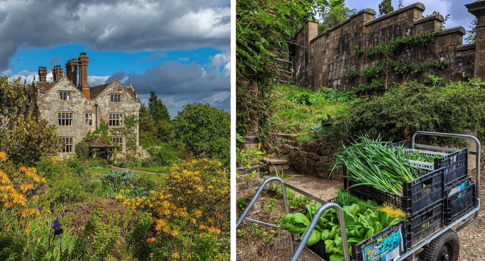 6 UK Hotel Kitchen Gardens for a Sustainable Getaway