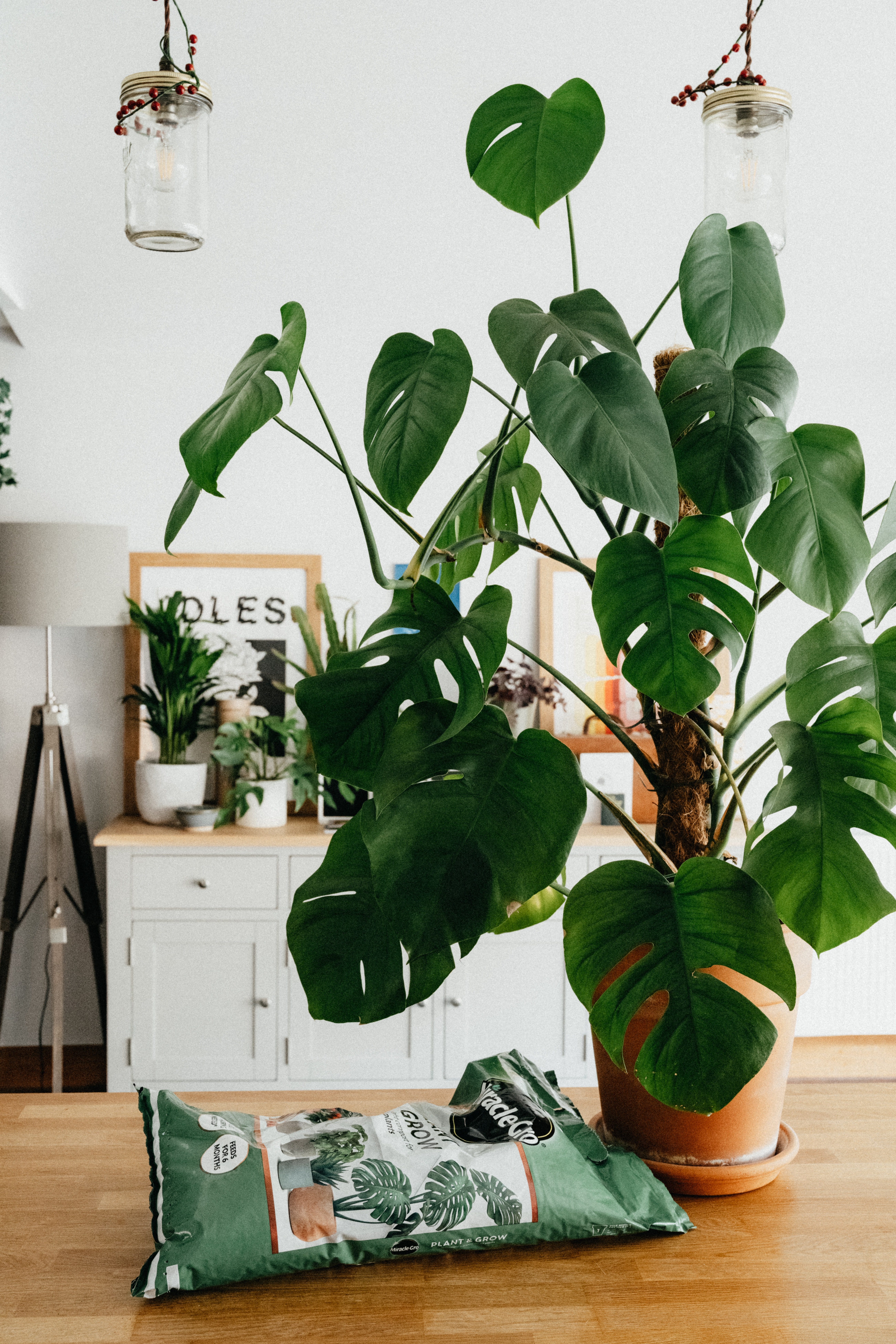 8 Eco-Friendy Mother's Day Gift Ideas for Mom and Mother Earth