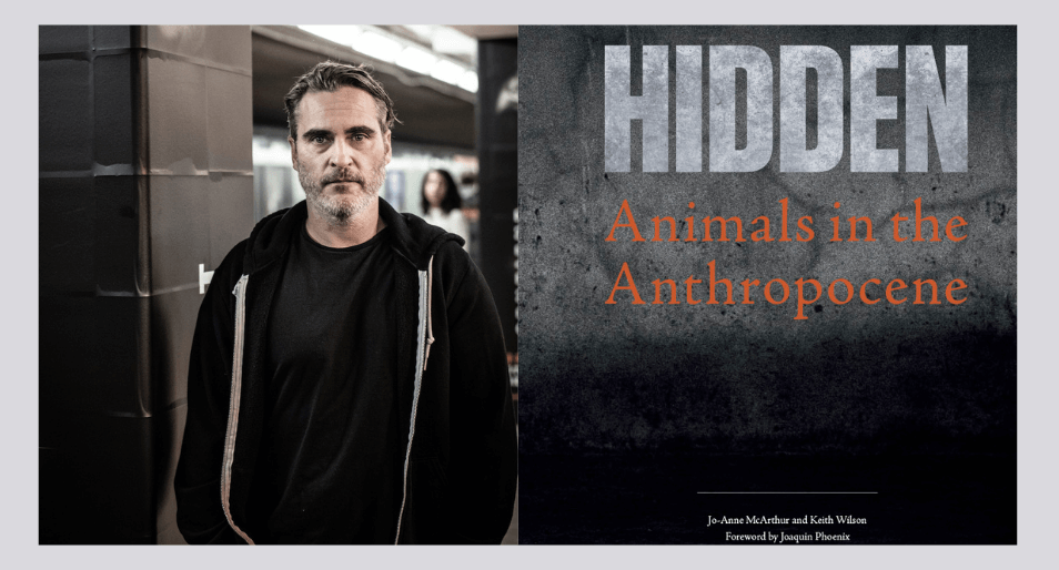 Joaquin Phoenix's Pledge to Animal Rights Movement: 'Until All Are Free'