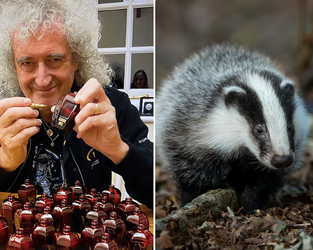 Brian May's New Luxury Fragrance Line Smells Like the Badgers It Saves