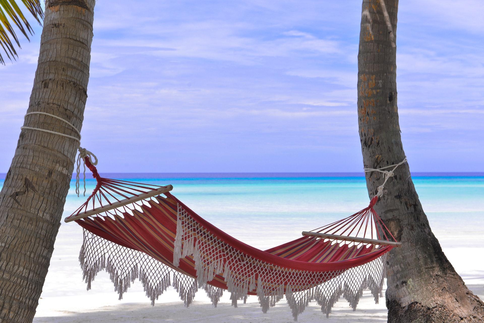 beach and hammock