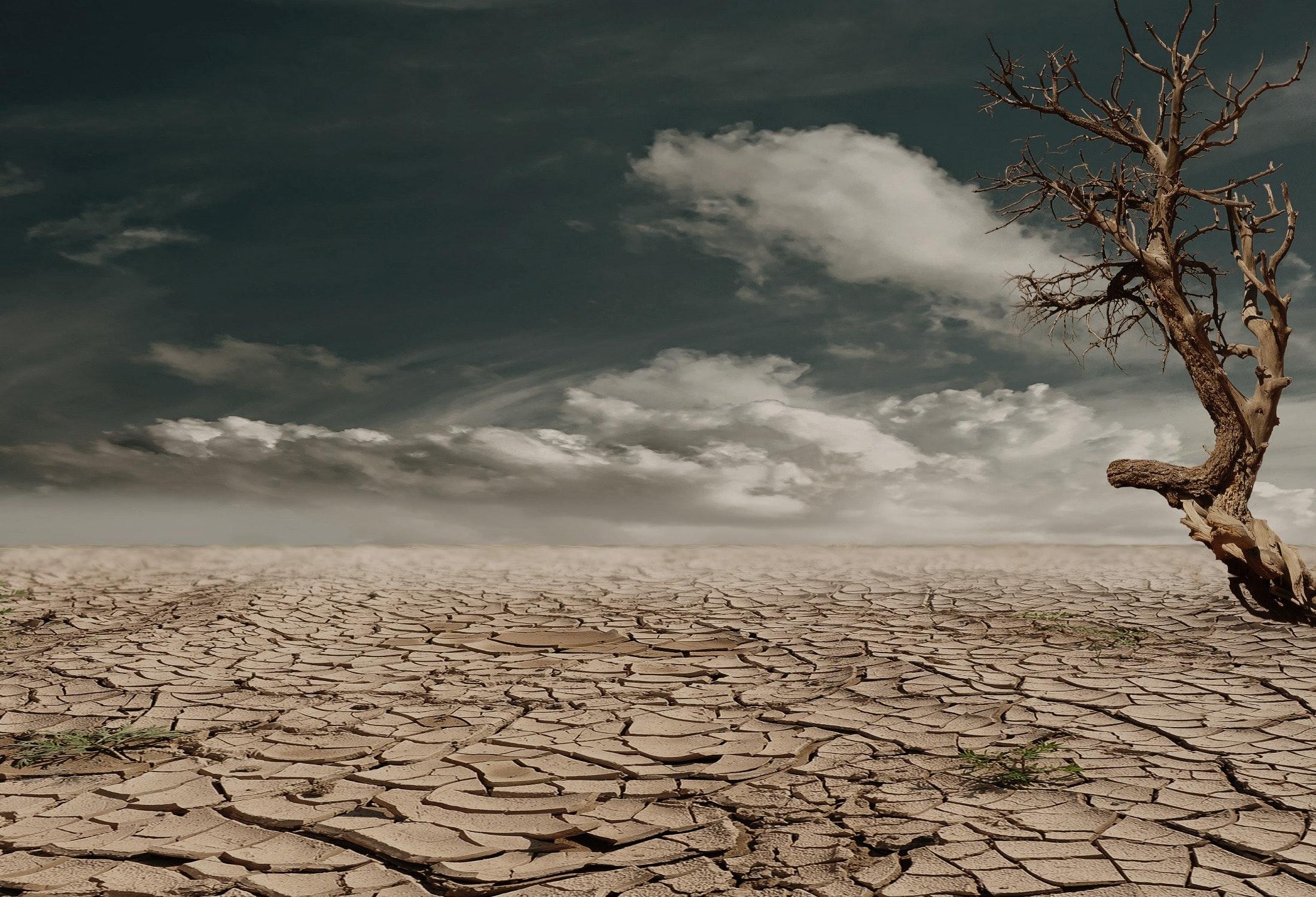global warming desert