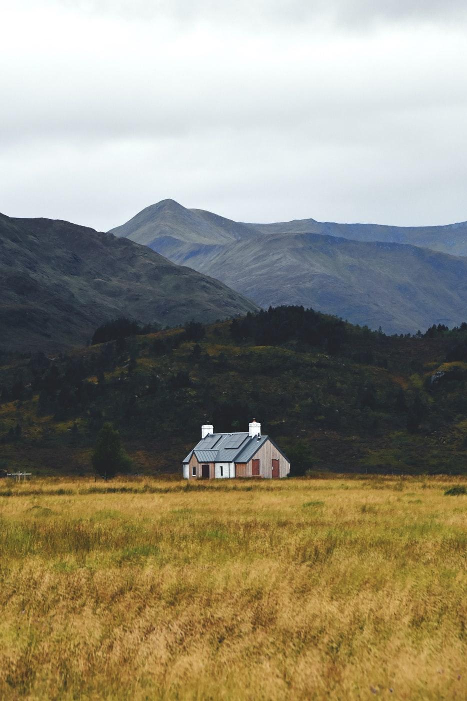 Reclaim, Release, Rewild: Restoring the Scottish Highlands